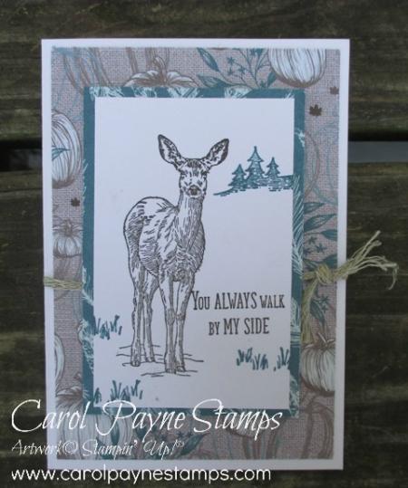 Stampin_up_natures_beauty_carolpaynestamps October ordering gift