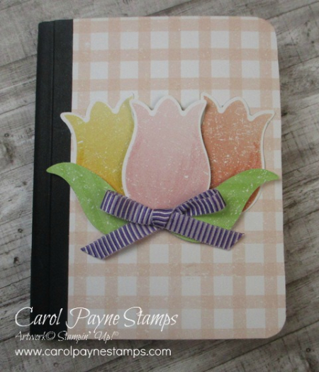 Stampin_up_pleased_as_punch_book_carolpaynestamps1