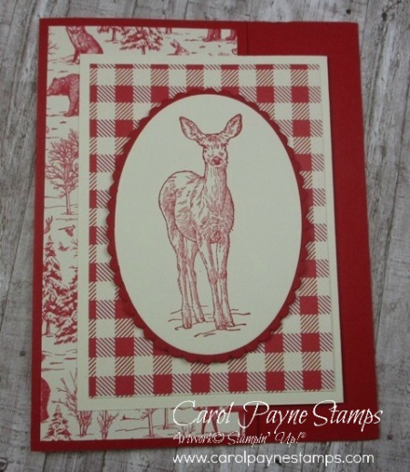Stampin_up_natures_beauty_carolpaynestamps5