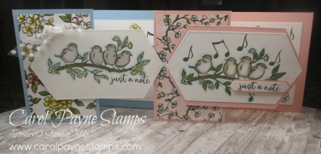 Stampin_up_free_as_a_bird_zfold_carolpaynestamps1
