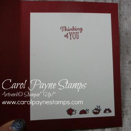 Stampin_up_little_ladybug_carolpaynestamps5