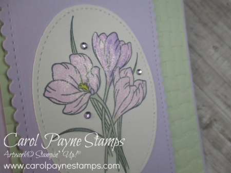 Stampin_up_easter_promise_carolpaynestamps2