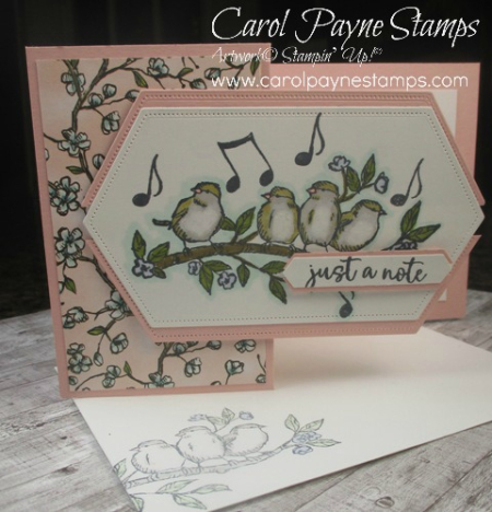 Stampin_up_free_as_a_bird_zfold_carolpaynestamps2