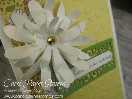 Stampin_up_ornate_garden_carolpaynestamps2-1
