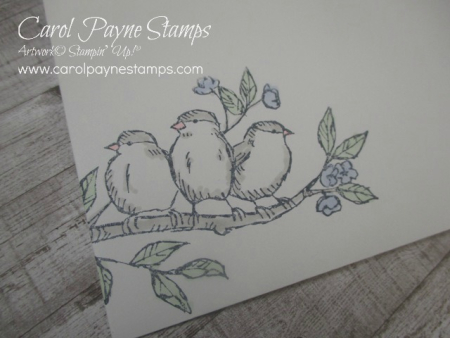Stampin_up_free_as_a_bird_zfold_carolpaynestamps6