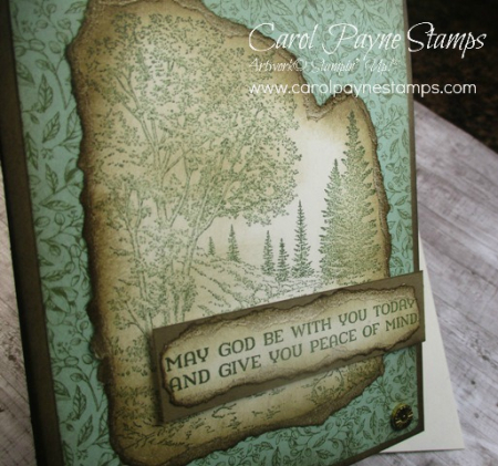 Stampin_up_peaceful_place_carolpaynestamps3