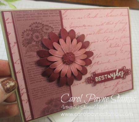 Stampin_up_pressed_petals_carolpaynestamps2