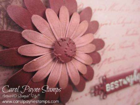 Stampin_up_pressed_petals_carolpaynestamps3