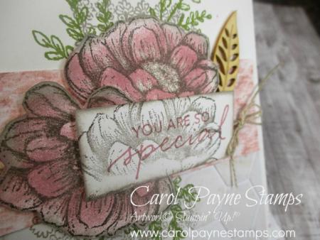 Stampin_up_tasteful_touches_catalog_case_carolpaynestamps6
