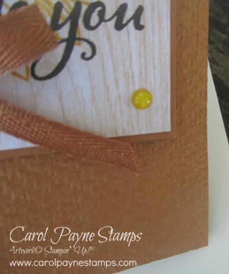 Stampin_up_celebrate_sunflowers_carolpaynestamps5-1
