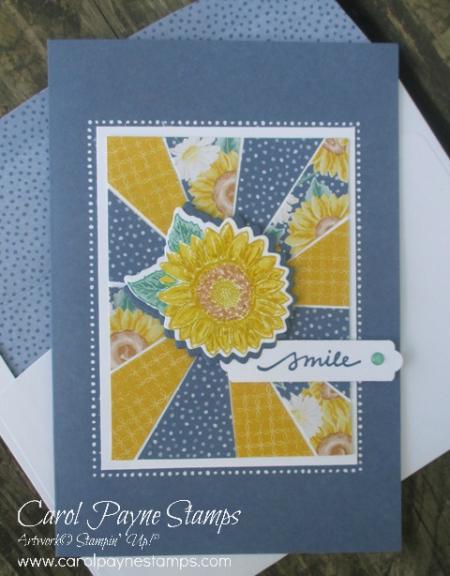 Stampin_up_sunburst_sunflower_carolpaynestamps2