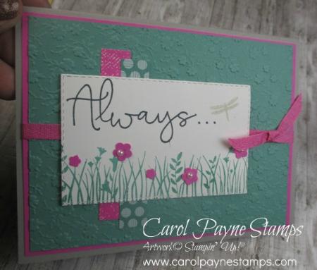 Stampin_up_field_of_flowers_carolpaynestamps1