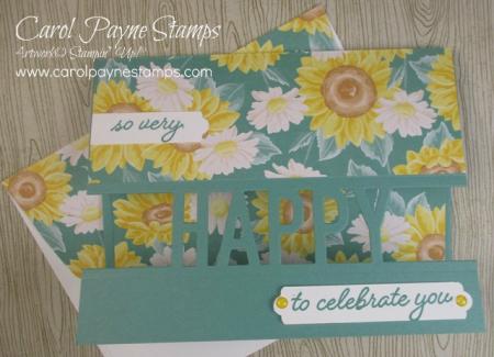 Stampin_up_so_much_happy_carolpaynestamps2-2