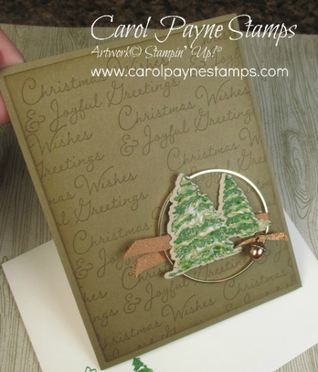 Stampin_up_snow_wonder_carolpaynestamps2