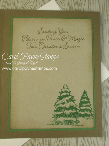 Stampin_up_snow_wonder_carolpaynestamps8