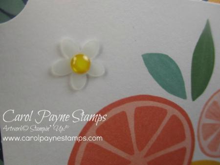 Stampin_up_simply_citrus_carolpaynestamps5