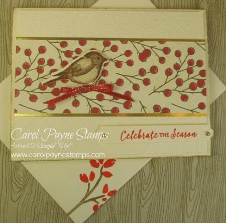Stampin_up_birds_&_branches_carolpaynestamps3