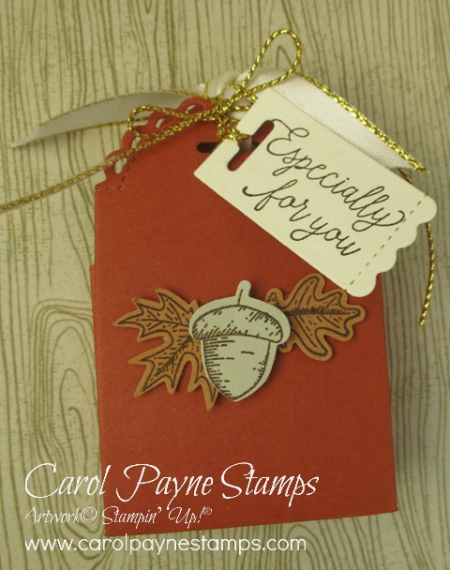 Stampin_up_little_treats_box_carolpaynestamps3