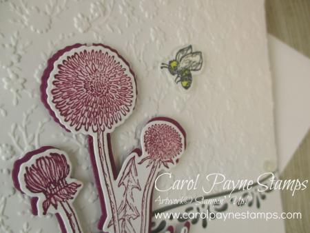 Stampin_up_garden_wishes_carolpaynestamps2