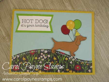 Stampin_up_hot_dog_carolpaynestamps1