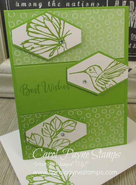 Stampin_up_a_touch_of_ink_carolpaynestamps8