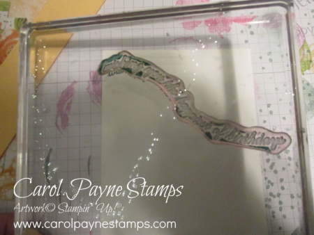 Stampin_up_quite_curvy_carolpaynestamps5