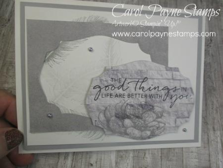 Stampin_up_tasteful_touches_carolpaynestamps7