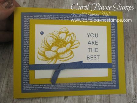 Stampin_up_tasteful_touches_carolpaynestamps11