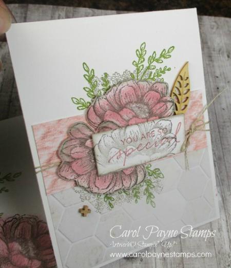 Stampin_up_tasteful_touches_catalog_case_carolpaynestamps3