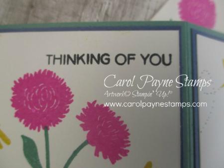 Stampin_up_field_of_flowers_carolpaynestamps9