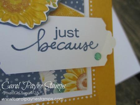 Stampin_up_sunburst_sunflower_carolpaynestamps11