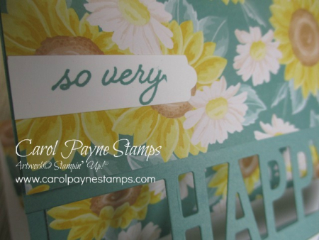Stampin_up_so_much_happy_carolpaynestamps4-2