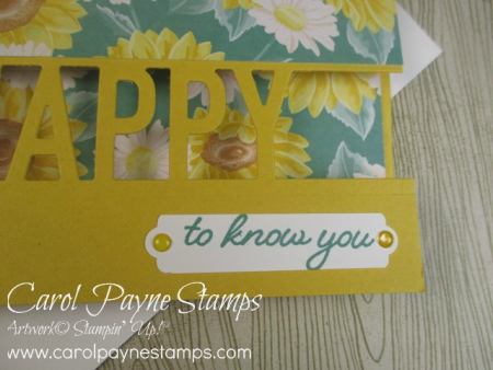 Stampin_up_so_much_happy_carolpaynestamps9-2