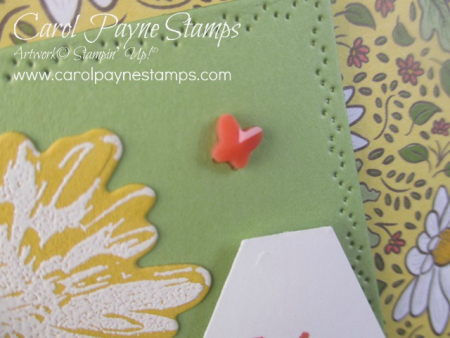 Stampin_up_positive_thoughts_carolpaynestamps6-1