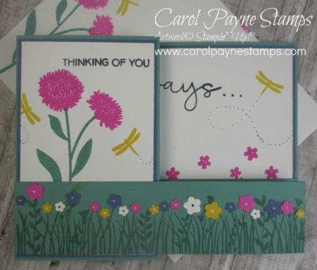Stampin_up_field_of_flowers_carolpaynestamps7