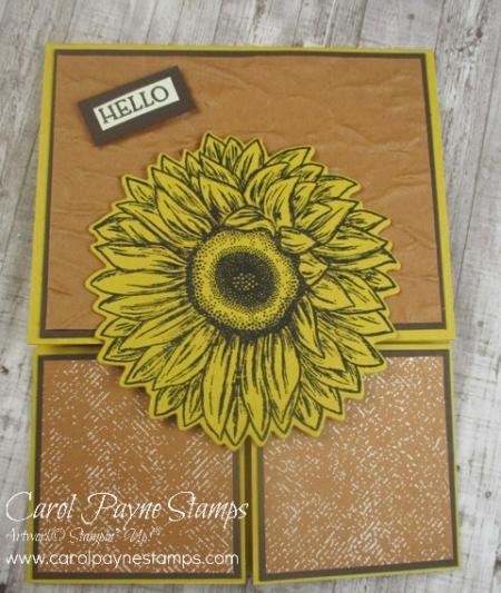 Stampin_up_celebrate_sunflowers_carolpaynestamps4