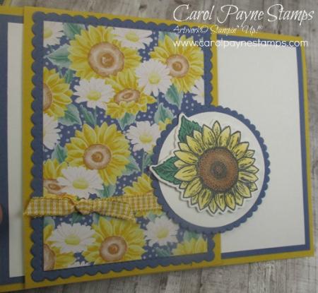 Stampin_up_celebrate_sunflowers_carolpaynestamps8