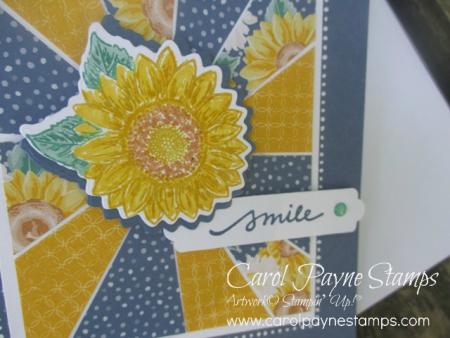 Stampin_up_sunburst_sunflower_carolpaynestamps5
