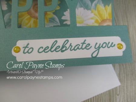 Stampin_up_so_much_happy_carolpaynestamps5-2