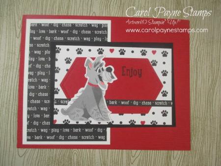 Stampin_up_pampered_pets_carolpaynestamps3