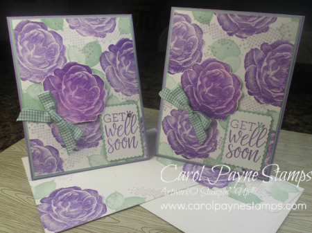 Stampin_up_healing_hugs_carolpaynestamps1