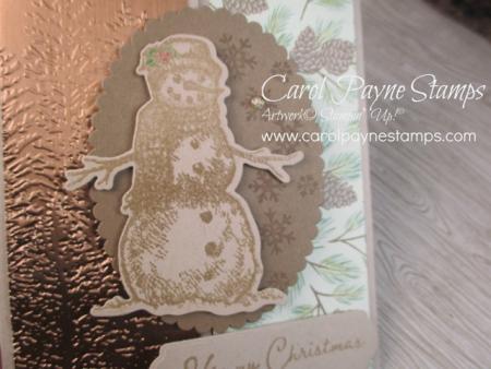 Stampin_up_snow_wonder_carolpaynestamps5