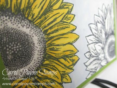 Stampin_up_celebrate_sunflowers_slim_carolpaynestamps5