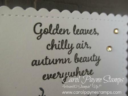 Stampin_up_autumn_goodness_carolpaynestamps2