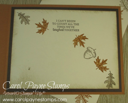 Stampin_up_beautiful_autumn_carolpaynestamps16
