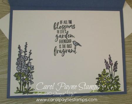 Stampin_up_graces_garden_carolpaynestamps8