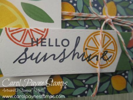 Stampin_up_simply_citrus_carolpaynestamps4