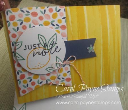 Stampin_up_simply_citrus_carolpaynestamps8