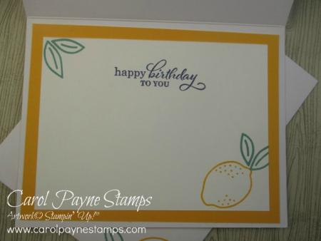 Stampin_up_simply_citrus_carolpaynestamps12