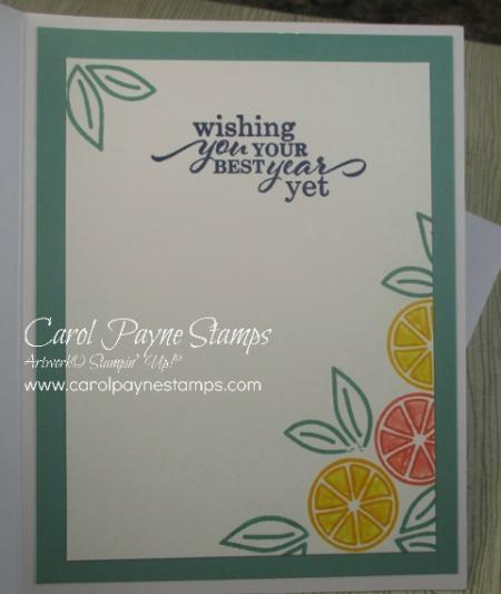 Stampin_up_simply_citrus_carolpaynestamps16